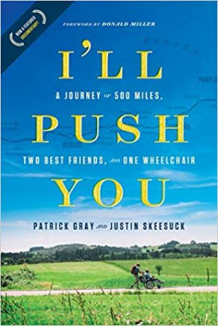 I'll Push You book cover